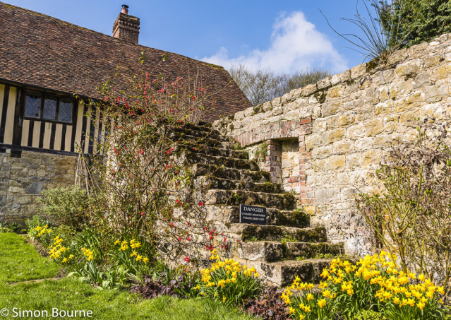 Simon Bourne, photography, photographer, north London, portfolio, image, gardens, spring, steps, Ightham Mote, home, house, grounds, medieval, Jacobean, Daffodils, Heuchera, Nikon