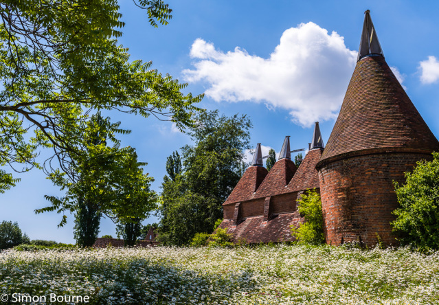 Simon Bourne, photography, photographer, north London, portfolio, image, gardens, summer, Sissinghurst, Kent, grounds, National Trust, RHS, Nikon, hops, building, roof, oast house, tiles, bricks, daisies, white flowers