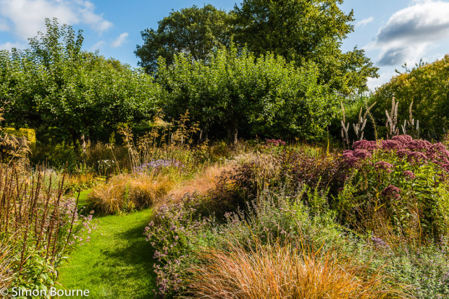 Simon Bourne, photography, photographer, north London, portfolio, image, gardens, autumn, fall, Le Manoir, Oxfordshire, Raymond Blanc, grounds, Nikon, wildflower, meadow, Chris Beardshaw