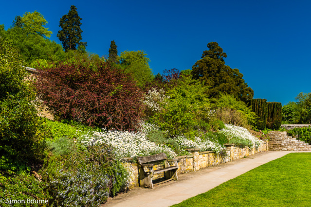 Simon Bourne, photography, photographer, north London, portfolio, image, gardens, spring, Chartwell, Winston Churchill, home, house, grounds, flowers, tree, blue sky, bench, pathway, path, Nikon, Kent