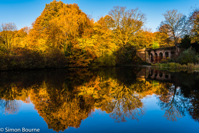 Simon Bourne, photography, photographer, north London, portfolio, image, autumn, sunrise, dawn, landscape, tree, Nikon, Hampstead Heath, orange leaves, shadows, lake, pond, viaduct, bridge, reflections, water, brick, arches