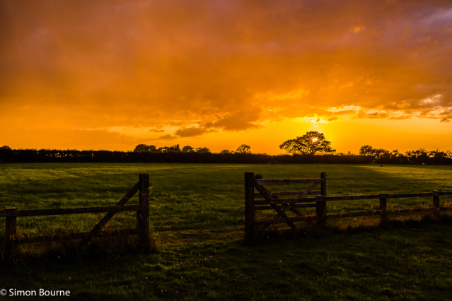 Simon Bourne, photography, photographer, north London, portfolio, image, landscape, Suffolk, Nikon, field, grass, storm clouds, stormy, sun rays, crepuscular, God's rays, sunset, dusk, trees, Aldeburgh, gate, fence