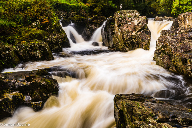 Simon Bourne, photography, photographer, north London, portfolio, image, autumn, landscape, trees, Nikon, Betws-y-Coed Falls, Pont-y-Pair Bridge, rapids, white water, waterfall, river, Snowdonia, North Wales, hills, mountains, rocks, wildlife, bird, Heron