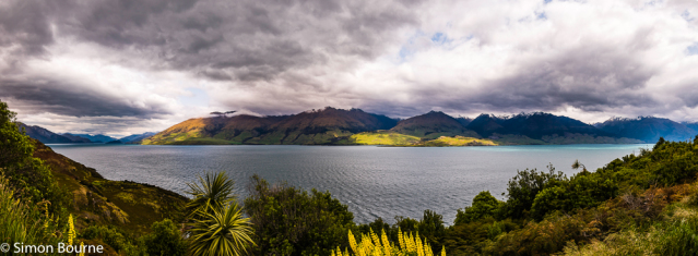 Simon Bourne, photography, photographer, north London, portfolio, image, spring, landscape, Nikon, Lake Wanaka, South Island, New Zealand, Aotearoa, lake, glacial, snow, mountains, aquamarine blue, green, yellow lupins, storm clouds, low cloud