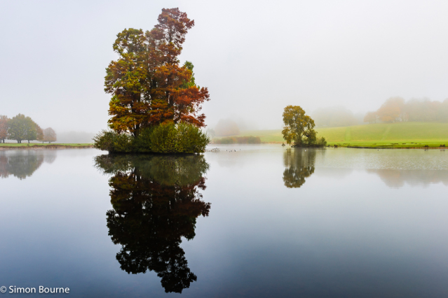 Simon Bourne, photography, photographer, north London, portfolio, image, gardens, autumn, fall, Petworth Park, Sussex, Upper Pond, lake, still water, landscapes, trees, Cypress, Willow, orange leaves, Capability Brown