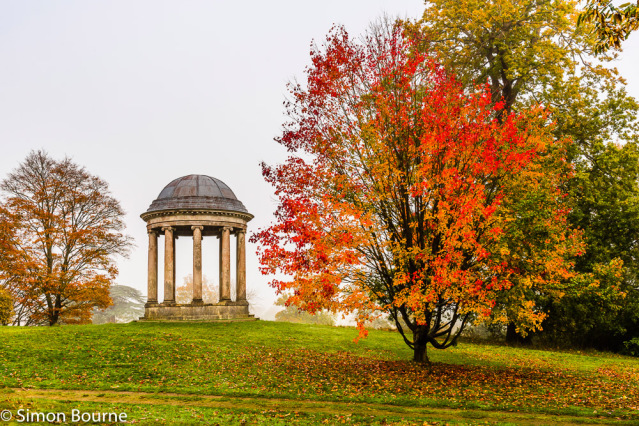 Simon Bourne, photography, photographer, north London, portfolio, image, gardens, autumn, fall, Petworth Park, Sussex, Pleasure Grounds, Ionic Rotunda, landscapes, trees, Liquidambar, red leaves, orange leaf, Capability Brown
