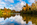 Simon Bourne, photography, photographer, north London, portfolio, image, gardens, autumn, Sheffield Park, Sussex, grounds, National Trust, landscape, Capability Brown, Nikon, lake, reflections, water, pond, trees